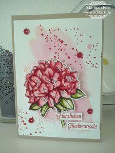 stampin good thoughts  GUte Gedanken Birhtday Geburtstag Karte  colored with stampin Marker and Aquapainter ... angemalt mit den stampin Marker und mittels Wassertankpinsel Farbe verwischt