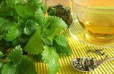 Using and Growing Lemon Balm - Recipes Lemon Balm Recipes, Lemon Balm Uses, Natural Cures, Natural Health, Growing Lemon Balm, Grow Lemon, Herbal Remedies, Home Remedies, Sleep Remedies