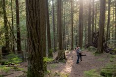 Engagement Session at Lynn Canyon Park in North Vancouver  #engaged #northvancouver #vancouver #photographer #weddings #location #forest #trees #love   Stefanie Fournier Photography