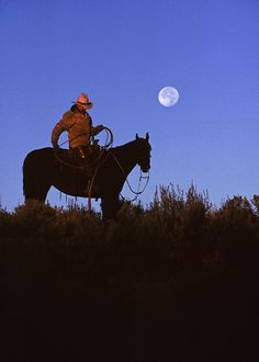 Cowboy roped the moon