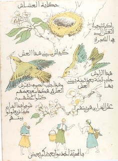 Lillias Trotter's illustrations and book about the birds of the air - in Arabic.