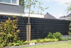 7 Rewarding Tricks: Modern Fence Topper Privacy Fence Screen Home Depot.Wooden Fence Installation Near Me Front Yard Fencing Adelaide. Brick Fence, Front Yard Fence, Farm Fence, Fenced In Yard, Horse Fence, Fence Stain, Concrete Fence, Pallet Fence, Bamboo Fence
