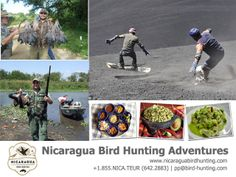 HUNTING + VOLCANO BOARDING – TRY SOMETHING NEW! Make it something new this 2014 with Nicaragua Bird Hunting Adventures.   3 days / 6 sessions Hunting Package, VIP treatment, finest gourmets, volcano boarding and a lot more..   For inquiries:  www.nicaraguahuntingadventures.com / nbhasales@gmail.com / 1-832-548-4913