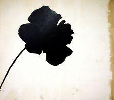 Jannis Kounellis, Rosa nera
