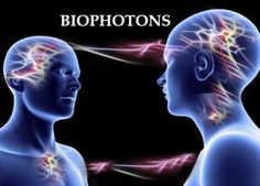 """Biophotons transmit information between cells within the body and also between organisms! Fritz-Albert Popp calls it """"photon sucking"""", which is the exchanging of photons. Barbara Brennan talks about this in her book """"Hands of Light"""" as the energy exchange between people via their chakras and aura (subtle bodies or energy field layers)."""