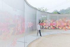 建築家の妹島和世(せじまかずよ)さんが犬島の家プロジェクトで設計した「a-art house」。 鮮やかな花の … <a href=