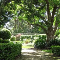 Traditional landscape by Living Colour Landscapes via Houzz