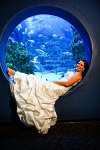 I love aquariums!  I want this one!