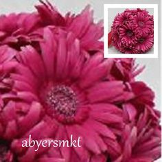 9 in Gerbera Daisy Kissing Ball BEAUTY Daisies Silk Flowers Wedding Arrangements #Unbranded #GerberaDaisy