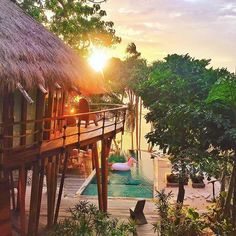 Nihiwatu Resort - Sumba Island, Indonesia. NIHIWATU has been voted the number one hotel in the world by Travel + Leisure readers globally. The resort features stunning residences, pool villas and a luxury Treehouse There are many activities, water sports and excursions to choose from, and each of them will guarantee you some really unforgettable memories - hint: don't miss the famous Nihi Oka Spa Safari! /nihiwatu/ | Photo by @tiniihitakara