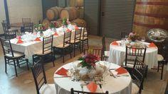 Bridal luncheon #txwine #wine #txvineyard #vineyard #privateparty #bridallunch #decorations