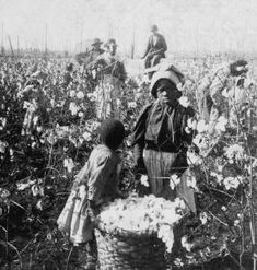 This website explains the History of Cotton. This would help students see different perspectives from around the globe and country.
