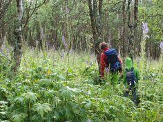Gerard nam Oeroeg en de ik-figuur altijd mee op zijn  wekelijkse tochten door het oerwoud. Dit was een van hun hoogtepunten toon ze kind waren.