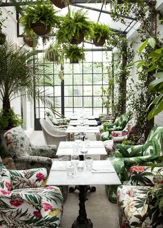 bourne & hollingsworth buildings light-filled greenhouse dining room | via coco kelley