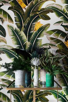 Haymes Rhythmic Palms= go tropical for your decorating and try some colours of the jungle in your home, perfect for summer! Style Tropical, Motif Tropical, Tropical Decor, Style Deco, Blog Deco, Tree Tops, British Colonial, Color Themes, Decoration