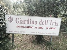 Il Giardino dell'Iris in Florence~ In Florence in spring? Head across the Arno to Piazzale Michelangelo, location of the famous not-to-be-missed view of Florence. ~ Walk across Viale dei Colli and you'll find the entrance to Il Giardino dell'Iris, the Iris Garden. ~ symbol of Florence since 1251, The red stylized iris (also recognized as the fleur de lis) in the coat-of-arms of Florence originated from the white iris which is native to Florence.