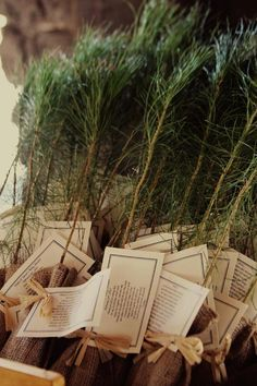 Rustic baby shower theme...give out saplings as the shower favor! I love this so much!!!!