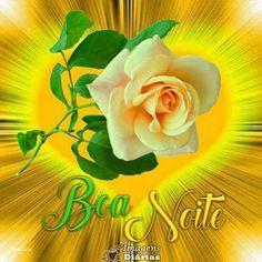 Good Night, Flowers, Plants, Top Imagem, Dali, Photos Of Good Night, Funny Good Morning Images, Beautiful Good Night Images, Prayer Cards