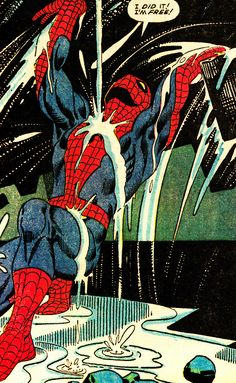 The Amazing Spider-man by Steve Ditko.