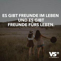Es Gibt Freunde Im Leben Und Es Gibt Freunde Furs Leben Verlorene Freundschaftfreundschaft Zitatespruche