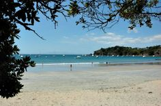 10 things to do in Auckland - Waiheke Island, just a short boat ride from Auckland Stuff To Do, Things To Do, Waiheke Island, New Zealand Travel, South Island, Auckland, Lifestyle Blog, Travel Inspiration, Travel Tips