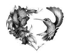 Hummingbird And Flower Tattoos Black And White Copihue hummingbird flickr…