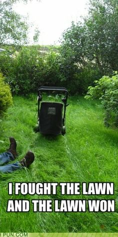 1000 Images About Lawn Care Quotes On Pinterest Lawn