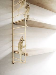 string soft beige - limited edition. beige side panels and oiled birch shelves