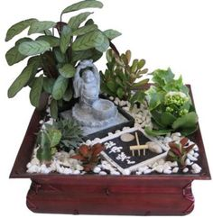 Imagenes Decoracion con un jardin zen miniatura Miniature Zen Garden, Mini Zen Garden, Meditation Room Decor, Meditation Garden, Ikebana, Zen Garden Design, Buddha Decor, Succulent Gardening, Organic Gardening