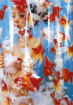 """rainingcats: """" Inspiring photographs taken by Mika Ninagawa I'm doing a group exhibition project on her photography so I scanned a bunch of her photos from her self titled photo book and just wanted. Betta, Kreative Portraits, Goldfish, Wall Collage, Art Inspo, Art Direction, Art Reference, Photo Art, Art Photography"""