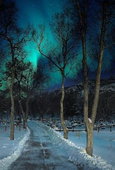 Aurora borealis creepy yet beautiful