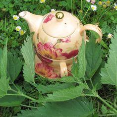 Au printemps les pousses d'orties sont idéales pour confectionner votre tisane