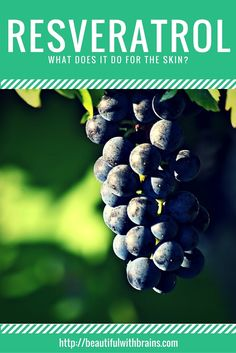 Resveratrol is a powerful antioxidant found in wine, blueberries, and other foods. It is said to fight wrinkles, have anti-inflammatory properties, and even boost sun protection. But, can it really do all these things? Click through to find out. via @giorgiabwb