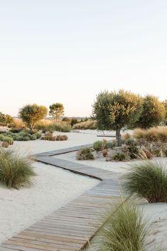Garden Landscaping With Stones Galeria de Casa Hopscotch / Antonio Costa Lima Arquitectos - 17