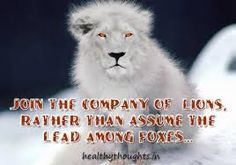 Image result for lion inspirational quotes