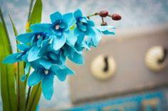Os tons de azul que vão regere o Outono de 2016. Fall Pantone 2016 - Orquídea Artificial - Formosinha Decorações