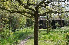 Vakantiehuis Romantiek in het Bos, 2 personen, Bergen (Noord-Holland)