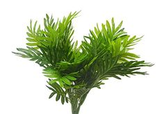 Artificial Shrubs 2pcs Artificial Plastic Palm Tree for Fake Simulation Greenery Plants Indoor Outside Home Garden Office Home Wedding Décor  BOUQUET - Leaves and flowers were made from plastic and the stems were made from plastic and iron wire,  EACH ORDER CONTAIN 4 PCS,  NO MAINTENANCE REQUIRED - no need trim and watering for people who have a busy schedule or but want to enjoy the overflowing of greenery in office, conference hall as the tabletop plants or floor plants.  100% QUALIT...