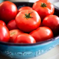 Grow amazing tomatoes with these 10 tips you may not have seen before. The best ten tips for growing tomatoes whether you are a gardening newbie or seasoned grower! Learn how to have a strong start to your tomato season. Growing Tomatoes Indoors, Growing Tomatoes From Seed, Growing Tomato Plants, Growing Tomatoes In Containers, Growing Vegetables, Fresh Vegetables, How To Grow Tomatoes, Backyard Vegetable Gardens, Container Gardening Vegetables