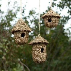 Woven Grass Bird Nests