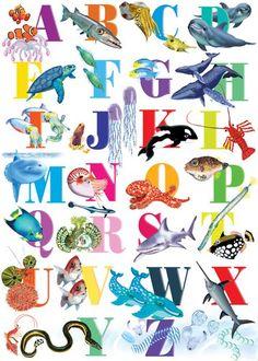 more ocean alphabet