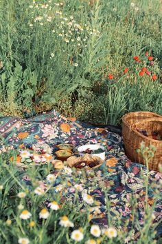 Picnic time in the wildflowers Theme Nature, Different Aesthetics, Nature Aesthetic, Aesthetic Vintage, Spring Aesthetic, Aesthetic Fashion, Cottage In The Woods, Picnic Time, Foto Art