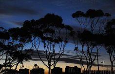 El sol poniéndose sobre el puerto de la sudafricana Ciudad del Cabo el 17 de junio de 2010 | Ver foto - Yahoo Noticias