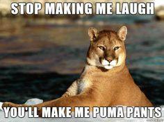 "ha, ""puma"" pants.. funny"