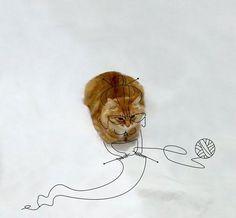 cat-doodle__605-1.jpg 605×560 ピクセル