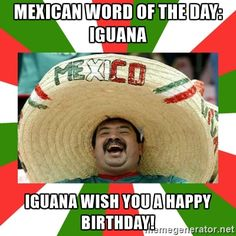 Sombrero Mexican - Mexican word of the day: iguana iguana wish you a happy birthday