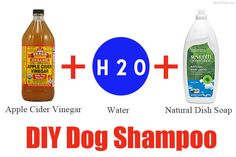 My favorite diy dog shampoo .. I add some mint and lavendar Young Living Essential Oils to mine.