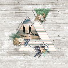 1 photo + triangles