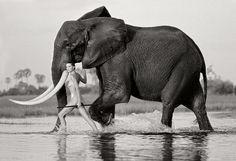 Horst Klemm Photography  Okavango Delta Botswana