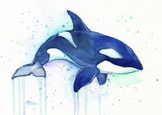 Image result for killerwhale stained glass